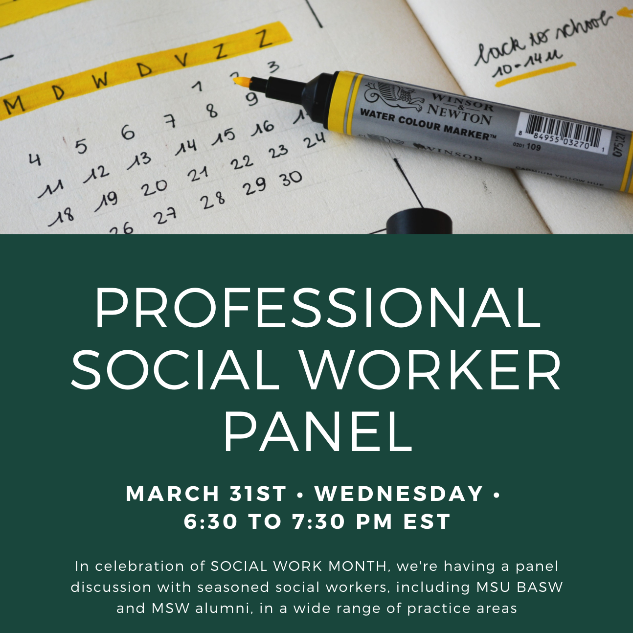 Professional Social Worker Panel